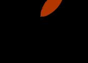 Softmatic Barcode for Mac logo