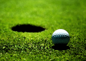 Golf Pro HD for Mac logo