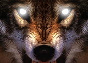Life Of Wolf 2014 for Mac logo