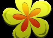 Magic Petals for Mac logo