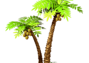 Paradise Beach for Mac logo