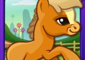 Pony Dash Pro for Mac logo