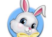 Spring Bonus for Mac logo