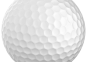 World Challenge Golf 2011 for Mac logo